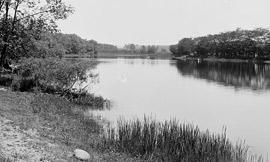 Seneca-River.jpg